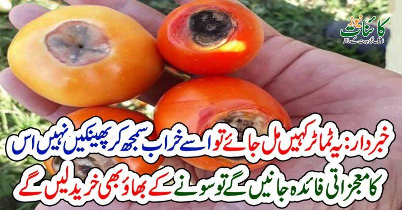 ٹماٹر کہیں مل جائے