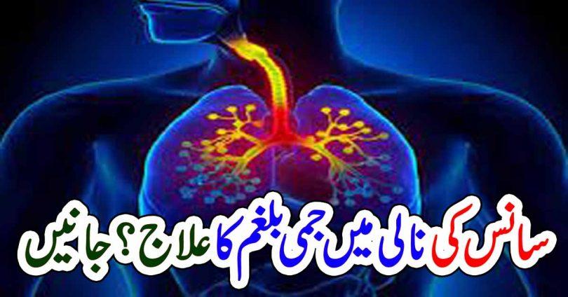 سانس کی نالی